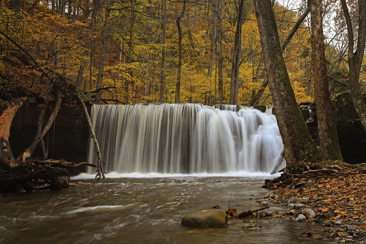Great Gully Falls in Cayuga County (photo)