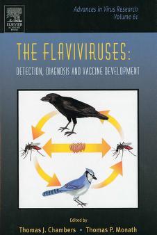 Cover of: The Flaviviruses | Thomas J. Chambers