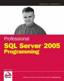 Professional SQL server 2005 programming by Robert Vieira